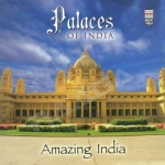 amazing india - palaces of india