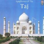 Amazing India - Taj