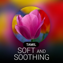 Soft & Soothing